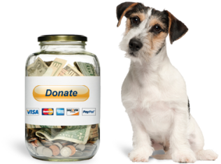 fundraise_hero
